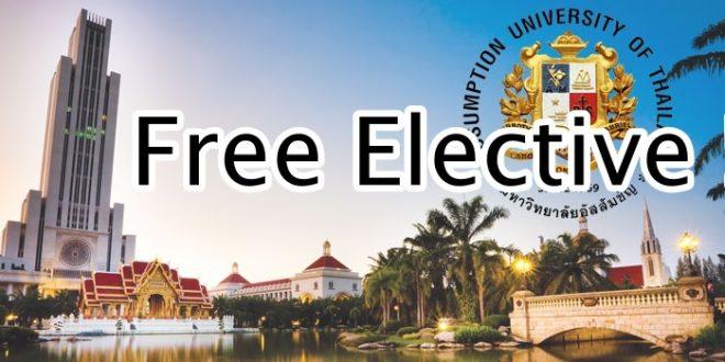 Free Elective เรียนอะไรดี? ทางนี้มีคำตอบ!!